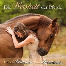 Wissen Pferdefluesterei Shop
