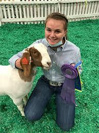 Leggett's YOU GOTTA BELIEVE Livestock Camps :: Winners