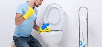 How to Fix a Slow Draining Toilet: A DIY Guide - Happy Hiller