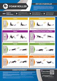 Foam Roller Printable Chart Related Keywords Suggestions