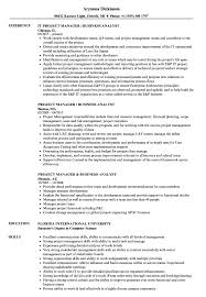 Business Analyst Project Manager Resume Sample Project Manager Business Analyst Resume Samples Velvet Jobs 9