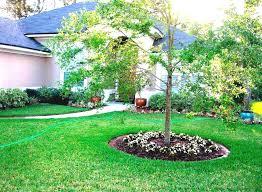 landscape ideas for around trees brilliant front yard landscaping trees trees for front yard landscaping ideas landscape and plants landscaping ideas around