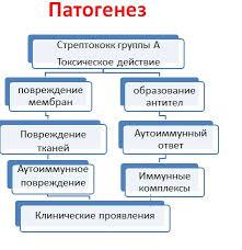 Сестринский процесс при ревматизме Медицина Сестринское дело  Сестринский процесс при ревматизме