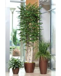 large artificial plants is there any place i can fake plant trees house to