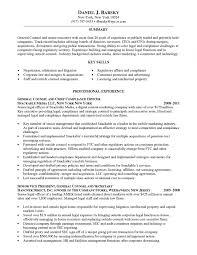 Resume Writing Nyc Kays Makehauk Intended For Professional Resume