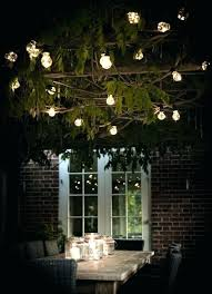 lighting outdoor trees. Unique Outdoor Lighting Decorations Lights Ideas For Trees House