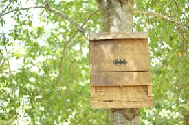 picture of the bat house a green energy efficient insect repellant