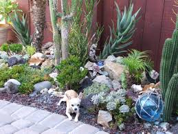 Cactus Succulent Landscape Design Modern Garden Design Ideas Cactus Fastcashtransaction Com