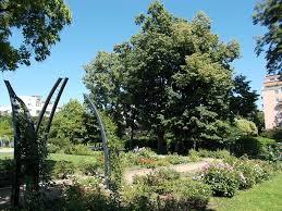 garden arches best of file szent istvà n park rose garden arches se wikimedia