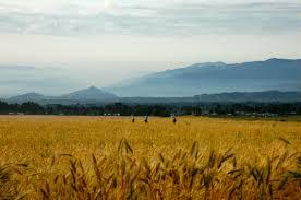 rwanda nziza a photo essay a year in kigali rwanda grain