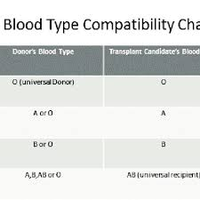 Blood Type Compatibility Chart Download Scientific Diagram