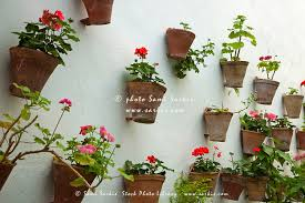 terracotta wall pots for plants flower decorating