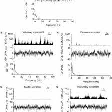 shouyan wang phd fudan university shanghai intelligence and 1 physiological definition of sensorimotor conditions using surface emg signals a