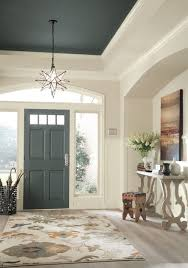 ceiling paint ideasDramatic Paint Inspiration SherwinWilliams Nouveau Narrative