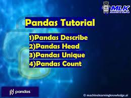 pandas tutorial describe head
