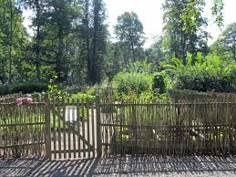 Kitchen Garden Fence 17 Best Ideas About Bamboo Garden Fences On Pinterest Bamboo