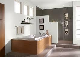 Bathroom Color Trends  Home Interior DesignsBathroom Color Trends