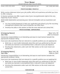 Free Professional Cv Templates Word 9 – Magnolian Pc