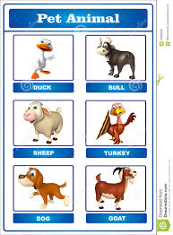 Pet Animal Picture Chart Pet Animal Chart Stock Illustration Illustration Of Sheep