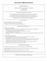 Summary Resume Samples Beautiful 12 Summary On Resume Examples