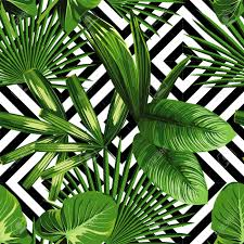 Palm Leaf Pattern Awesome Print Summer Exotic Jungle Plant Tropical Palm Leaves Pattern
