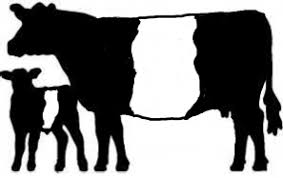 show heifer silhouette. Perfect Show Small Cow And Calfjpg 5988 KB 897x567  Viewed 5442 Times Intended Show Heifer Silhouette