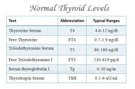 Thyroid Levels Chart Normal Thyroid Levels