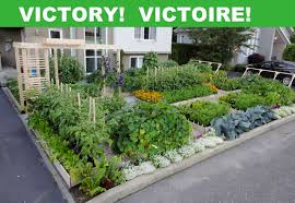 Small Picture Victoire In Drummondville Quebec Front Yard Garden Gets To Stay
