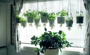 window herb garden kitchen window herb garden hanging herb garden kit indoor kitchen window with light