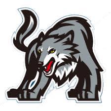 Tag: minnesota timberwolves concept logo | Sports Logo History