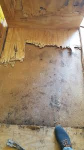 Concrete Wood Floor Repairing Water Damaged Hardwood Floors Mr Floor Chicago