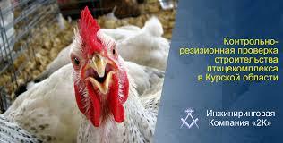 Контрольно ревизионная проверка строительства  Контрольно ревизионную проверку в рамках строительства птицекомплекса в Курской области