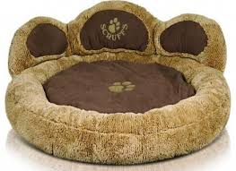 cool beds for teens for sale. Creative Bed Ideas, Cool Dog Beds For Sale Teens A