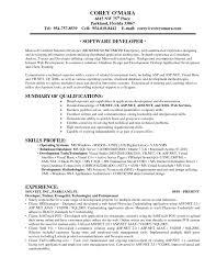 Vb Sql Programmer Sample Resume Best Ideas Of Free Sample Vb Dotnet Programmer Sample Resume Resume 18
