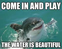e in and play the water is beautiful shark meme shark week memes shark
