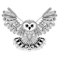 Small Picture Advanced coloring pages owl wingspan ColoringStar