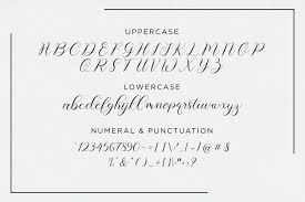 Cool Fonts To Write In Alyana Script Font Befonts Com