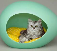 livingsocial pei pod pet beds with cushion