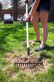 tips for spring lawn garden prep