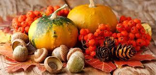 Afbeeldingsresultaat voor afbeelding herfst
