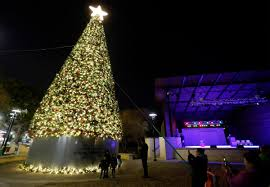 City Of Arlington Installs 65 Foot Christmas Tree Ahead Of