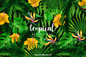 tropical background with wild flowers free vector