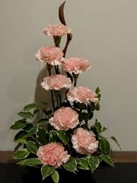 Carnations, a twisted piece of wood and some ficus foilage - keeping it  simple  FicusFlower ArrangementsIkebanaWreathsIdeas ...