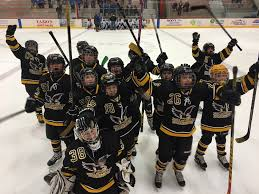 archived news valley youth hockey association congratulations to valley s squirt graf team for winning their tour nt this past weekend in the words of their manager kevin cooke