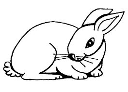 Small Picture Printable Rabbit Coloring Pages Coloring Me