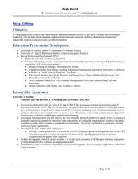 executive cio it senior management resume - Sample Millwright Resume