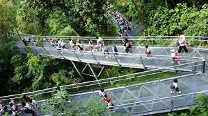 Kết quả hình ảnh cho mount faber singapore