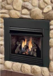 insert with er sided wood burning fireplace insert with er gas inserts avalon dv cambridge face
