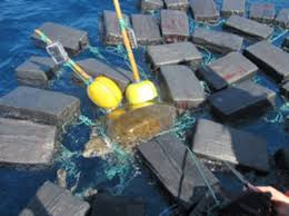 turtle found 53 million worth of cocaine attached to it it is not thought that the drugs were intentionally attached to the sea creature but rather that it swam into the ropes fastened to the cocaine
