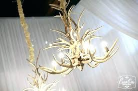 antler chandelier home depot crystal farms antler chandeliers crystal farm antler chandeliers and antler furniture crystal